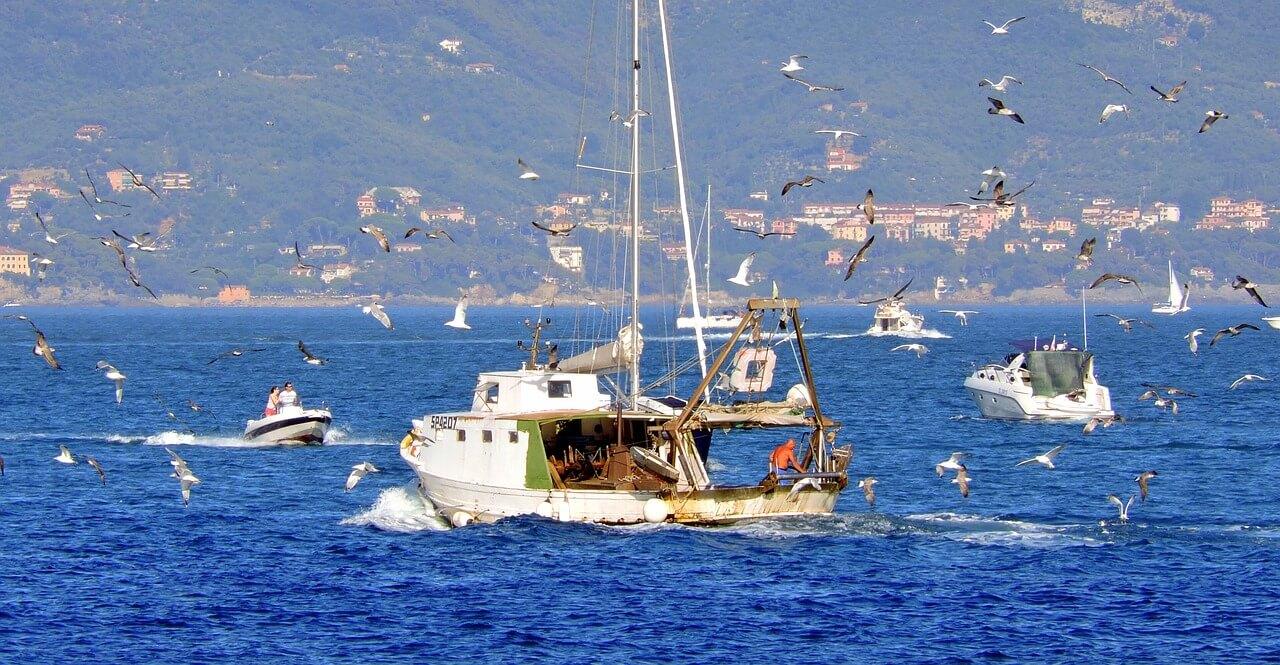 fishing-948662_1280
