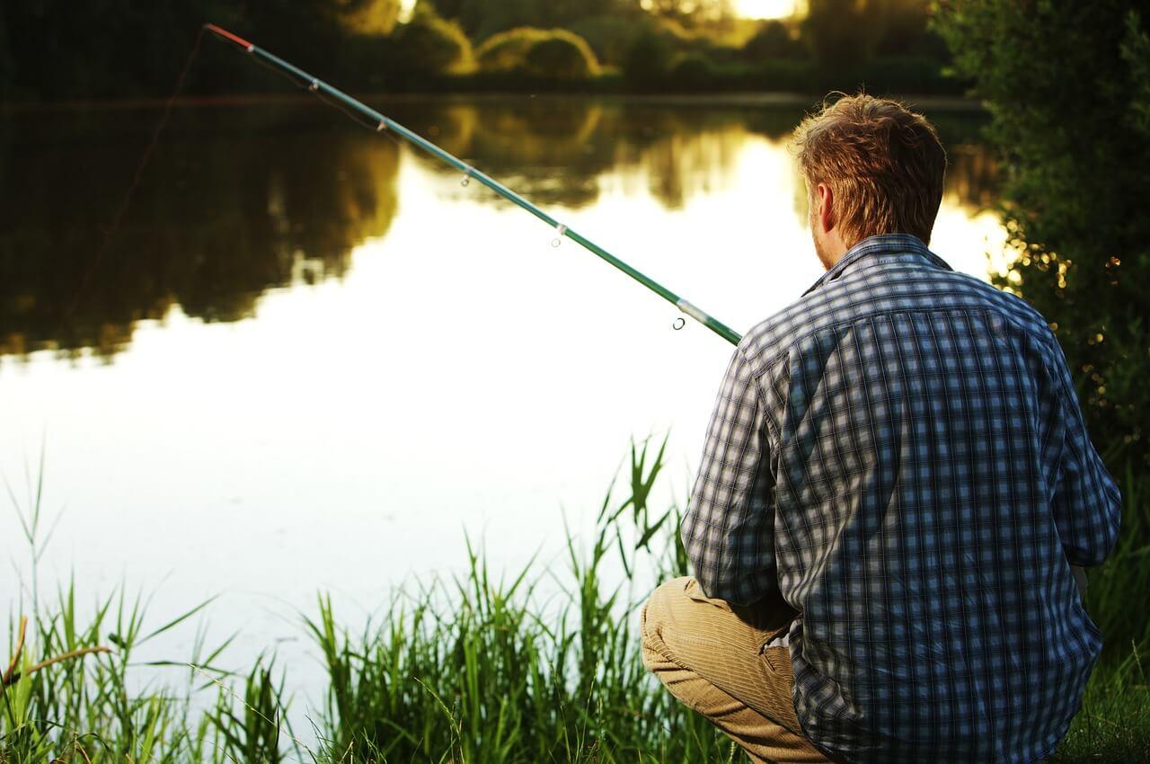 fish-1331930_1280